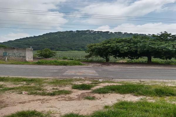Foto de terreno habitacional en venta en totolapan 1, san marcos, totolapan, morelos, 0 No. 07