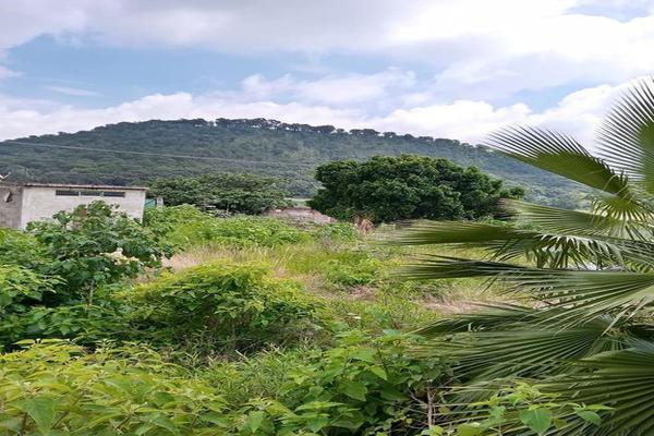 Foto de terreno habitacional en venta en totolapan 1, san marcos, totolapan, morelos, 0 No. 08