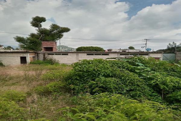 Foto de terreno habitacional en venta en totolapan 1, san marcos, totolapan, morelos, 0 No. 09