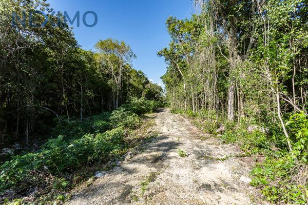 Foto de terreno industrial en venta en tramo carretero felipe carrillo puerto-tulum 664, chumpon, felipe carrillo puerto, quintana roo, 6154355 No. 03