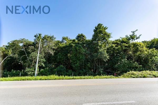 Foto de terreno industrial en venta en tramo carretero felipe carrillo puerto-tulum 664, chumpon, felipe carrillo puerto, quintana roo, 6154355 No. 10