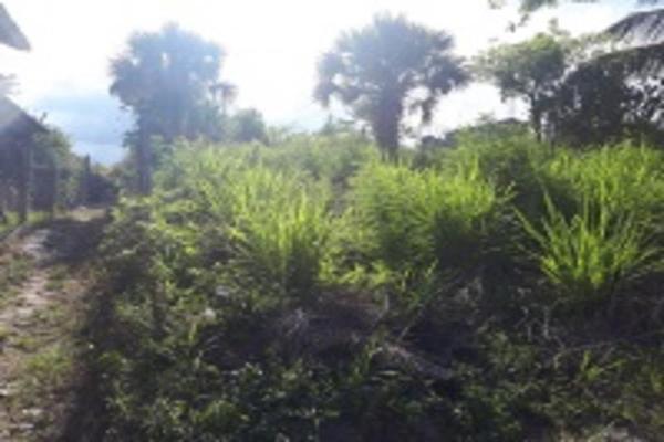 Foto de terreno habitacional en venta en trébol , infonavit las granjas de alto lucero, tuxpan, veracruz de ignacio de la llave, 5969501 No. 03