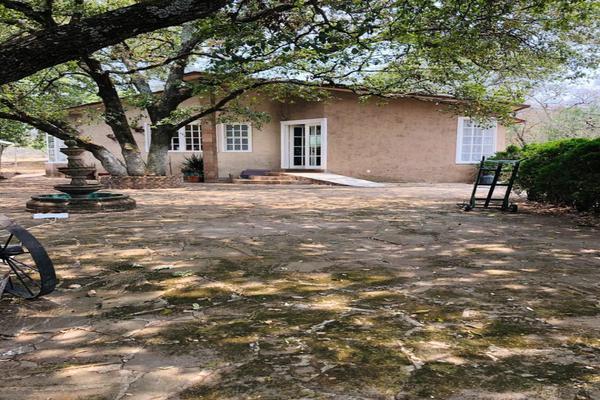 Foto de casa en venta en  , tulancingo centro, tulancingo de bravo, hidalgo, 15241280 No. 03