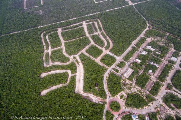Foto de terreno habitacional en venta en  , tulum centro, tulum, quintana roo, 11446680 No. 03
