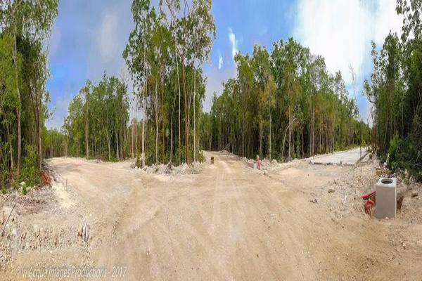 Foto de terreno habitacional en venta en  , tulum centro, tulum, quintana roo, 11446680 No. 06