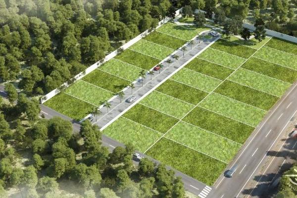 Foto de terreno habitacional en venta en  , tulum centro, tulum, quintana roo, 7861105 No. 10