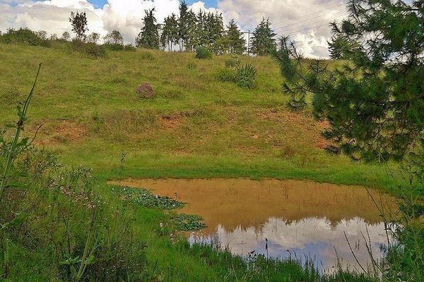 Foto de terreno habitacional en venta en  , tupátaro, huiramba, michoacán de ocampo, 13828792 No. 03