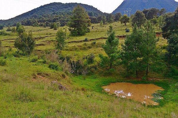 Foto de terreno habitacional en venta en  , tupátaro, huiramba, michoacán de ocampo, 13828792 No. 04