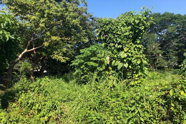 Foto de terreno habitacional en venta en  , tuxtepec, san juan bautista tuxtepec, oaxaca, 0 No. 05