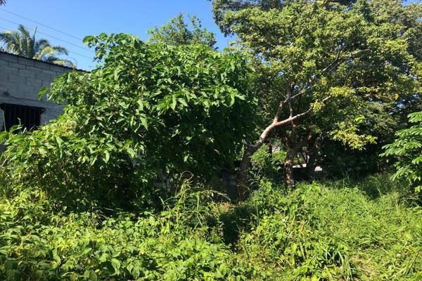 Foto de terreno habitacional en venta en  , tuxtepec, san juan bautista tuxtepec, oaxaca, 0 No. 06