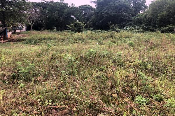 Foto de terreno habitacional en venta en  , tuxtepec, san juan bautista tuxtepec, oaxaca, 0 No. 14