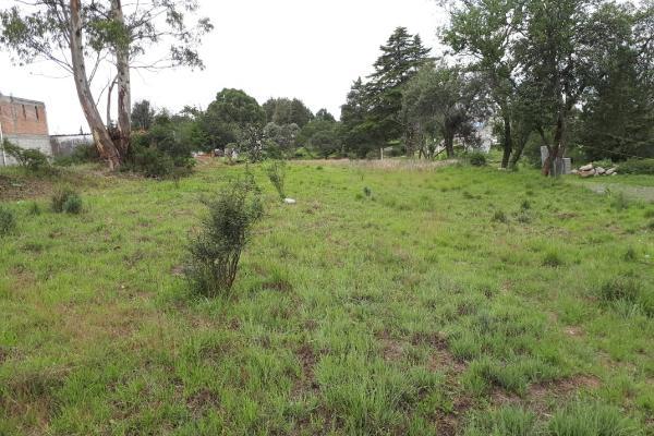 Foto de terreno habitacional en venta en tzompanac 00 , amaxac de guerrero, amaxac de guerrero, tlaxcala, 5387806 No. 02