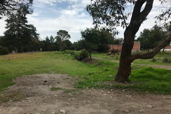 Foto de terreno habitacional en venta en tzompanac 00 , amaxac de guerrero, amaxac de guerrero, tlaxcala, 5387806 No. 03
