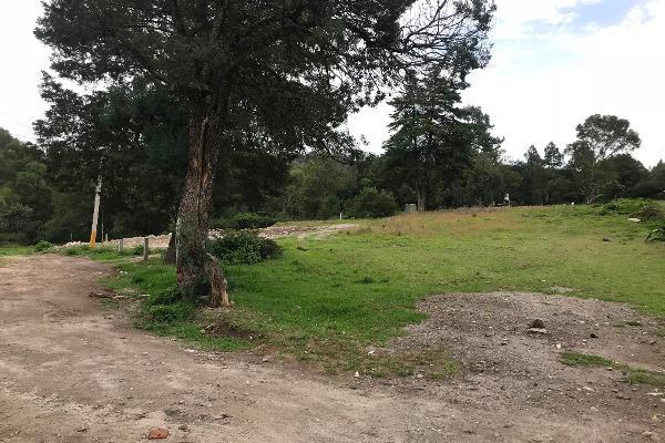 Foto de terreno habitacional en venta en tzompanac 00 , amaxac de guerrero, amaxac de guerrero, tlaxcala, 5387806 No. 04