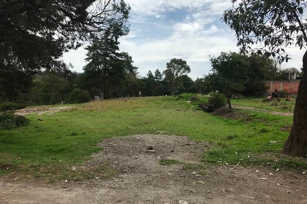 Foto de terreno habitacional en venta en tzompanac 00 , amaxac de guerrero, amaxac de guerrero, tlaxcala, 5387806 No. 05