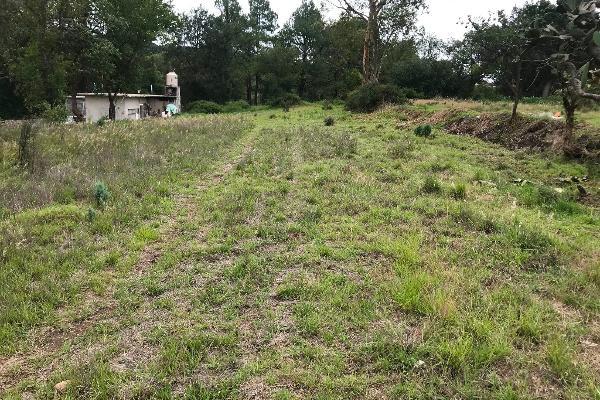 Foto de terreno habitacional en venta en tzompanac 00 , amaxac de guerrero, amaxac de guerrero, tlaxcala, 5387806 No. 13