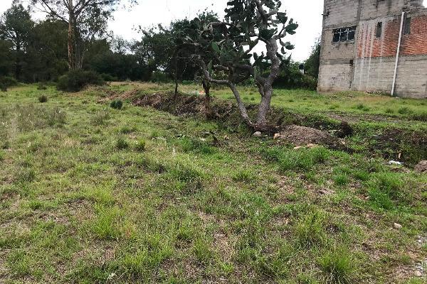 Foto de terreno habitacional en venta en tzompanac 00 , amaxac de guerrero, amaxac de guerrero, tlaxcala, 5387806 No. 14