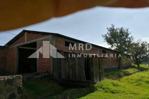 Foto de terreno habitacional en venta en tzurumutaro , tzurumutaro, pátzcuaro, michoacán de ocampo, 20302050 No. 07