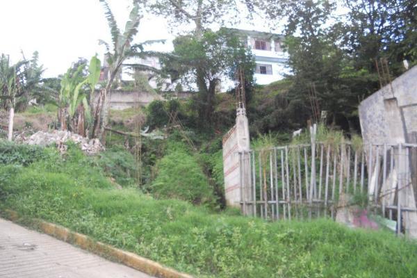 Foto de terreno comercial en venta en  , ucisver, xalapa, veracruz de ignacio de la llave, 3136289 No. 02