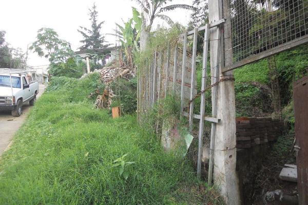 Foto de terreno comercial en venta en  , ucisver, xalapa, veracruz de ignacio de la llave, 3136289 No. 05