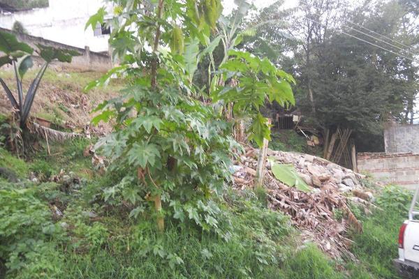 Foto de terreno comercial en venta en  , ucisver, xalapa, veracruz de ignacio de la llave, 3136289 No. 06