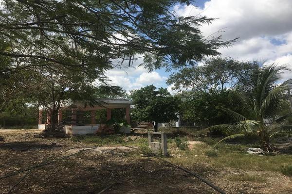 Foto de rancho en venta en  , ucu, ucú, yucatán, 19781497 No. 07