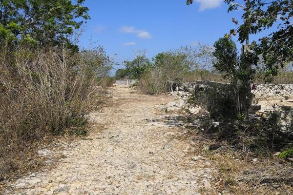 Foto de terreno habitacional en venta en  , ucu, ucú, yucatán, 7974853 No. 01