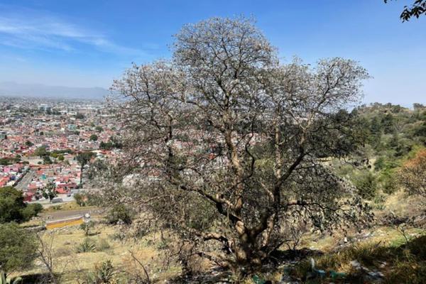 Foto de terreno habitacional en venta en urbano fonseca 00, zopilocalco norte, toluca, méxico, 0 No. 04