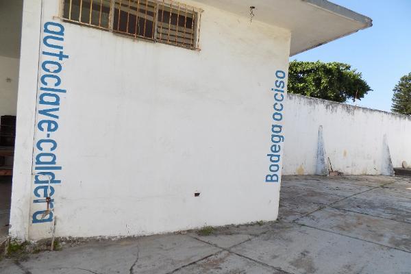 Foto de local en renta en uruguay s/n , las américas, coatzacoalcos, veracruz de ignacio de la llave, 7159252 No. 35