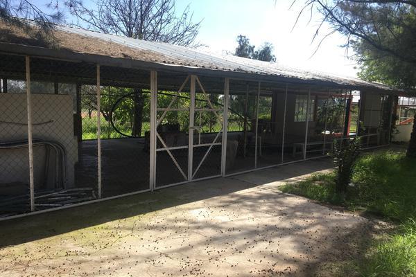 Foto de terreno habitacional en venta en valladolid , valladolid, jesús maría, aguascalientes, 6153831 No. 08