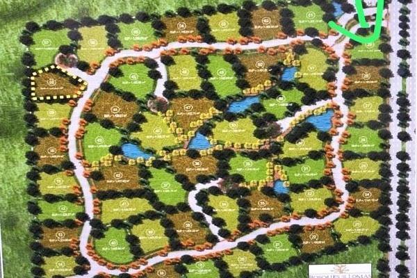 Foto de terreno habitacional en venta en  , vallarta universidad, zapopan, jalisco, 6202693 No. 04
