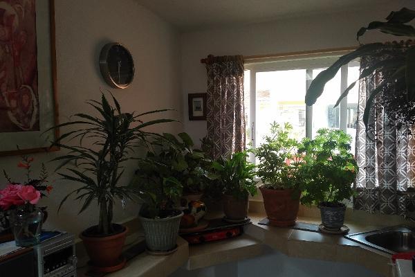 Foto de oficina en renta en  , valle de bravo, valle de bravo, méxico, 3427982 No. 08