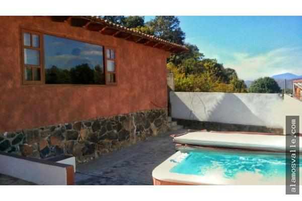 Foto de casa en renta en  , valle de bravo, valle de bravo, méxico, 4641150 No. 12