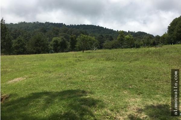 Foto de terreno habitacional en venta en  , valle de bravo, valle de bravo, méxico, 4641942 No. 01