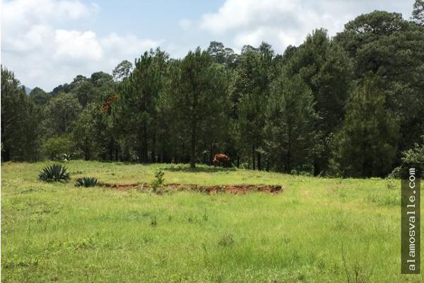 Foto de terreno habitacional en venta en  , valle de bravo, valle de bravo, méxico, 4641942 No. 02
