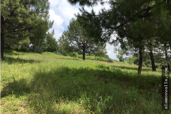 Foto de terreno habitacional en venta en  , valle de bravo, valle de bravo, méxico, 4641942 No. 04