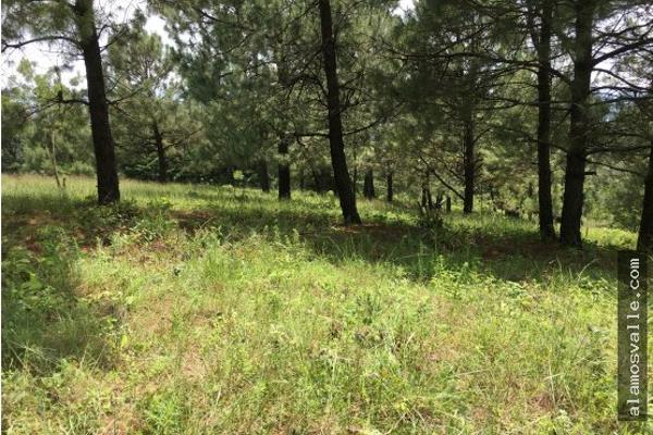 Foto de terreno habitacional en venta en  , valle de bravo, valle de bravo, méxico, 4641942 No. 05