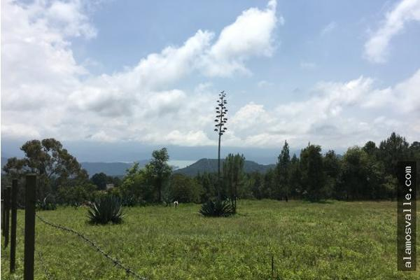 Foto de terreno habitacional en venta en  , valle de bravo, valle de bravo, méxico, 4641942 No. 06