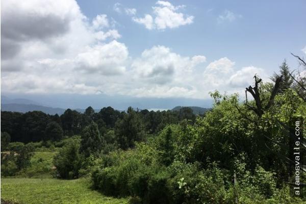 Foto de terreno habitacional en venta en  , valle de bravo, valle de bravo, méxico, 4641942 No. 07