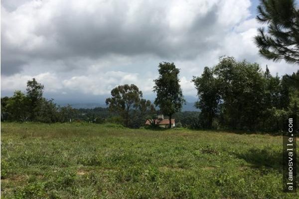 Foto de terreno habitacional en venta en  , valle de bravo, valle de bravo, méxico, 4641942 No. 08