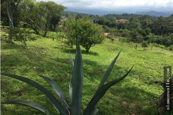 Foto de terreno habitacional en venta en  , valle de bravo, valle de bravo, méxico, 4641942 No. 09