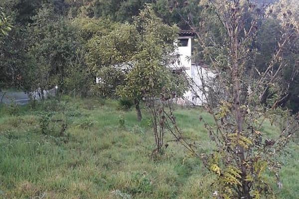 Foto de terreno habitacional en venta en  , cuadrilla de dolores, valle de bravo, m?xico, 5668264 No. 05