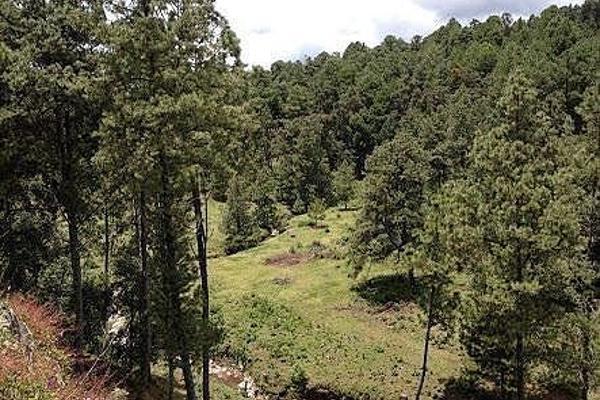 Foto de terreno habitacional en venta en  , valle de bravo, valle de bravo, méxico, 5694722 No. 02