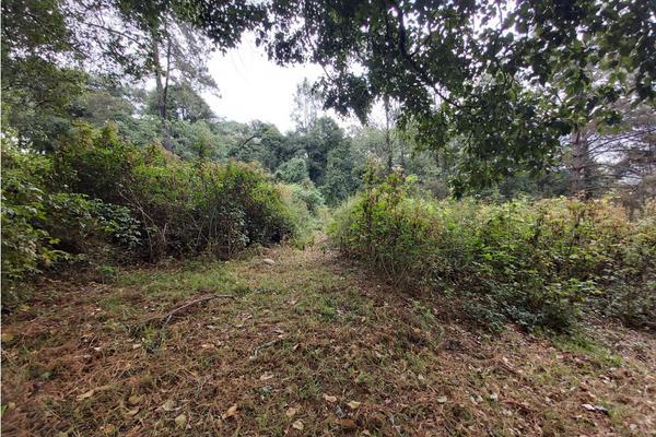 Foto de terreno habitacional en venta en  , valle de bravo, valle de bravo, méxico, 5931139 No. 04