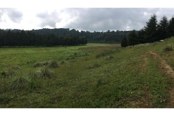 Foto de terreno habitacional en venta en  , valle de bravo, valle de bravo, méxico, 5931139 No. 09