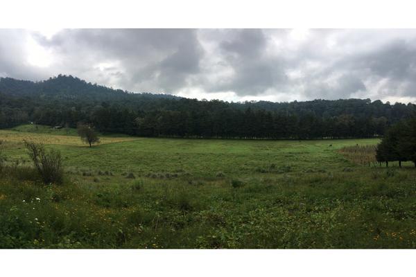 Foto de terreno habitacional en venta en  , valle de bravo, valle de bravo, méxico, 5931139 No. 10