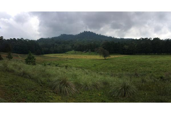 Foto de terreno habitacional en venta en  , valle de bravo, valle de bravo, méxico, 5931139 No. 11