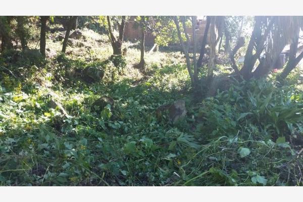 Foto de terreno habitacional en venta en  , rincón de estradas, valle de bravo, méxico, 6132306 No. 02