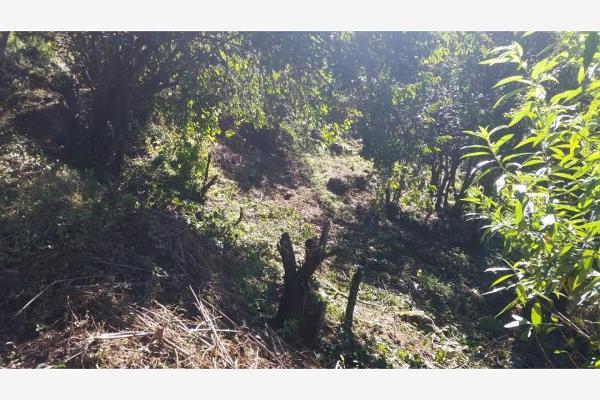 Foto de terreno habitacional en venta en  , rincón de estradas, valle de bravo, méxico, 6132306 No. 06