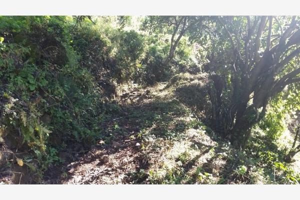 Foto de terreno habitacional en venta en  , rincón de estradas, valle de bravo, méxico, 6132306 No. 07